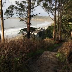 ridge trail above beach